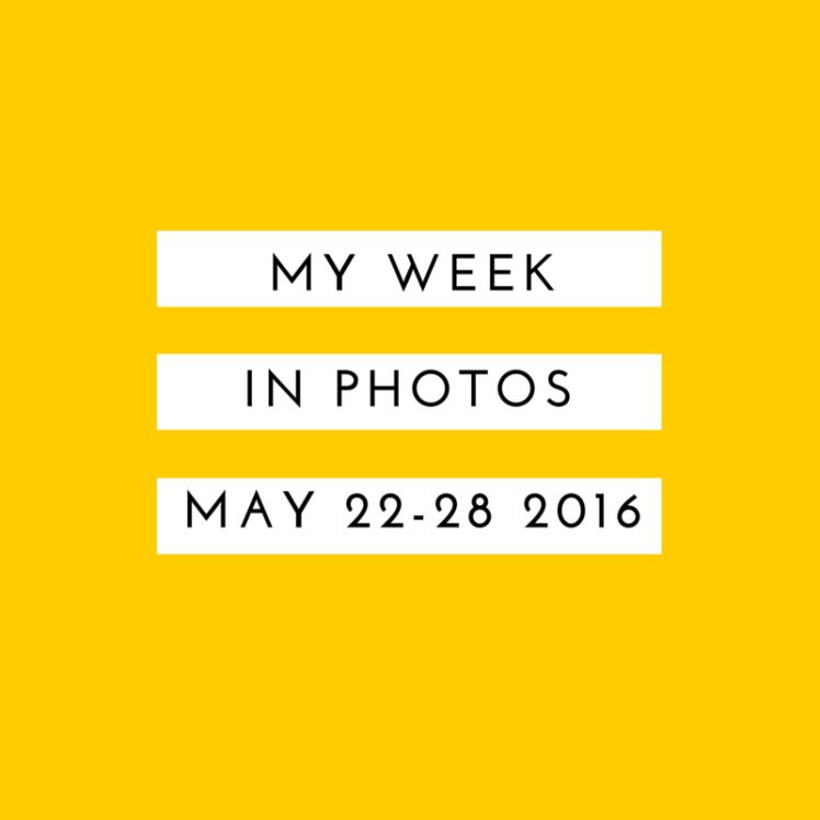My Week in Photos (2)