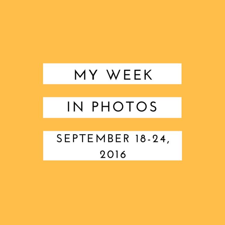 my-week-in-photos